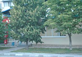 Аптека APOTECA фото 1
