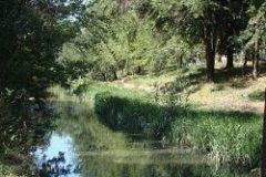 Десять миллионов евро на очистку реки Бык от Бухареста