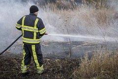 За последние сутки пожарные потушили 56 возгораний сухой травы