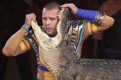 В Словакии запретят выступления животных в цирках