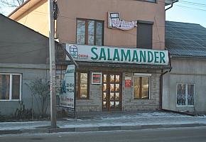 Магазин окна, двери - Salamander / Vitrine, uși - Salamander фото 1
