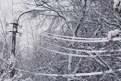 Молдавская зима сбежала во Францию?