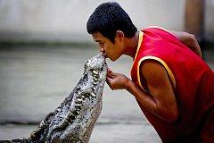 Когда и где в Бельцах, можно будет увидеть «поцелуй с крокодилом»?