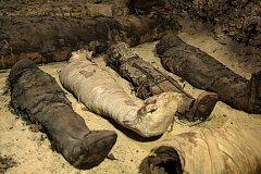 От чего умирали люди полмиллиона лет назад?